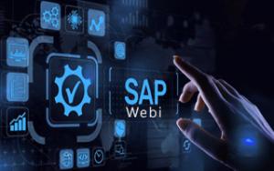 SAP Webi Online Training