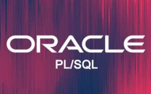 Oracle PL/SQL Online Training