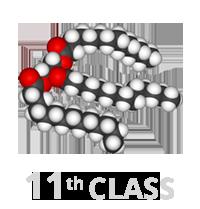 Class 11th - Lipids