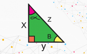 Class 10th - Introduction to Trigonometry (Hindi)