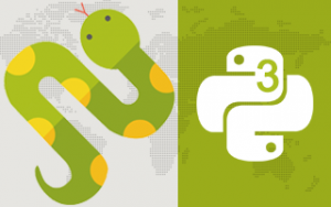Python 3 from scratch to become a developer in demand