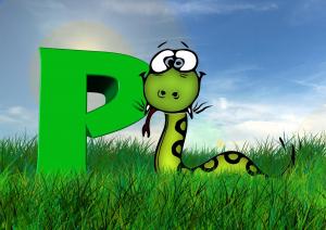 Python 3 from Beginner to Expert