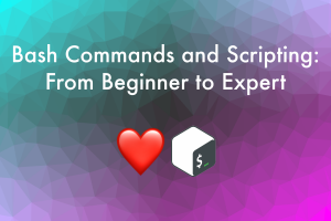 Bash Commands and Scripting - From Beginner to Expert